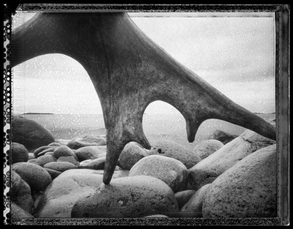 Antler and Cobbles, Isle Royale - pinhole camera photograph