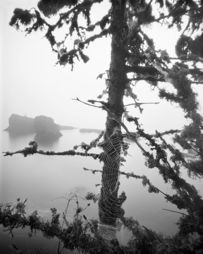 Merritt Lane, Isle Royale - pinhole camera photograph